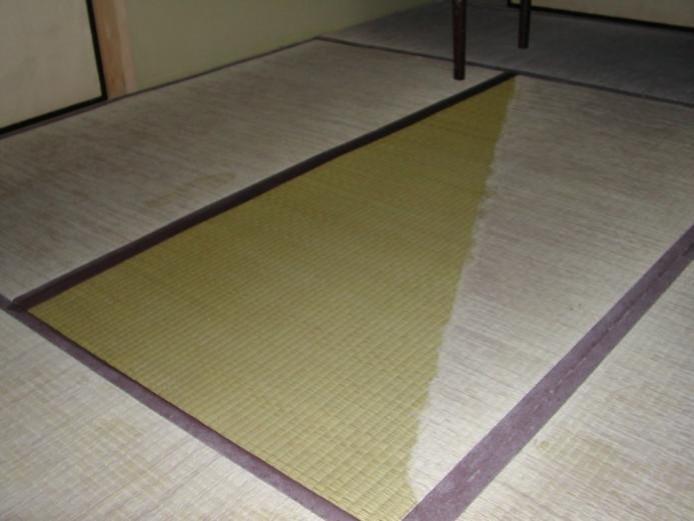 畳での機能検証
